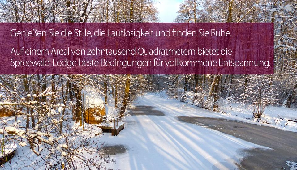 slider_winter315.jpg